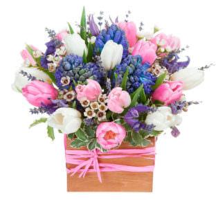 Цветы в коробке с гиацинтами